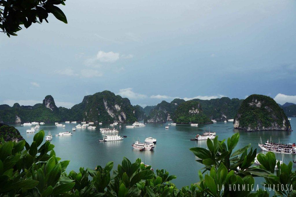 Halong bay, viaje Vietnam
