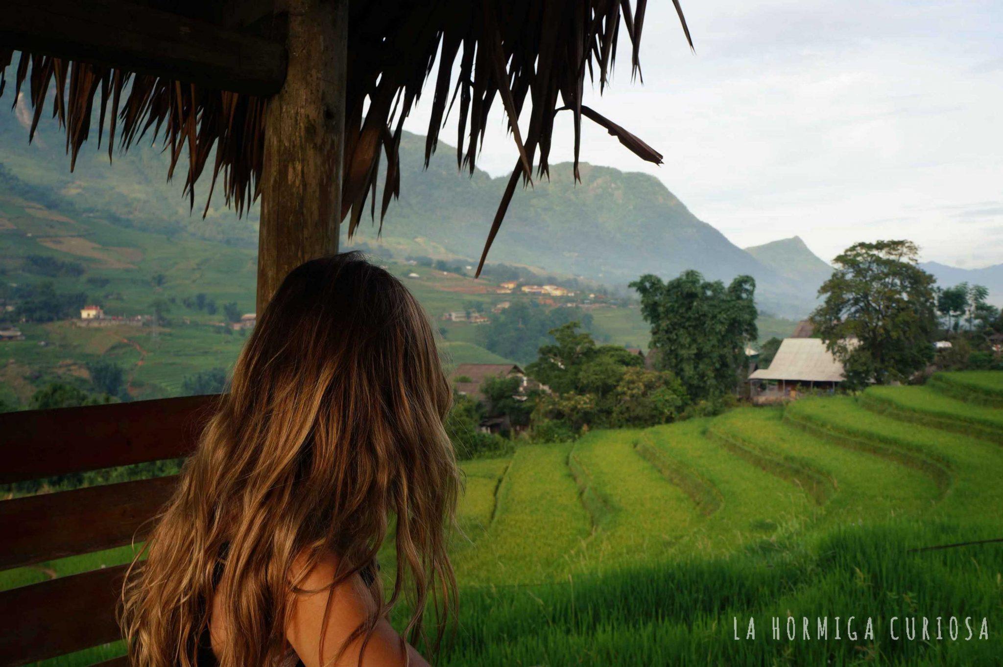 desconexion-entre-arrozales