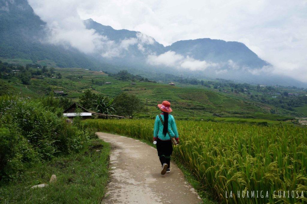 Trekking Sapa, viaje Vietnam