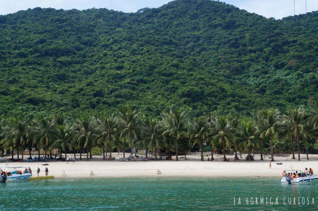 Islas Cham, viaje Vietnam