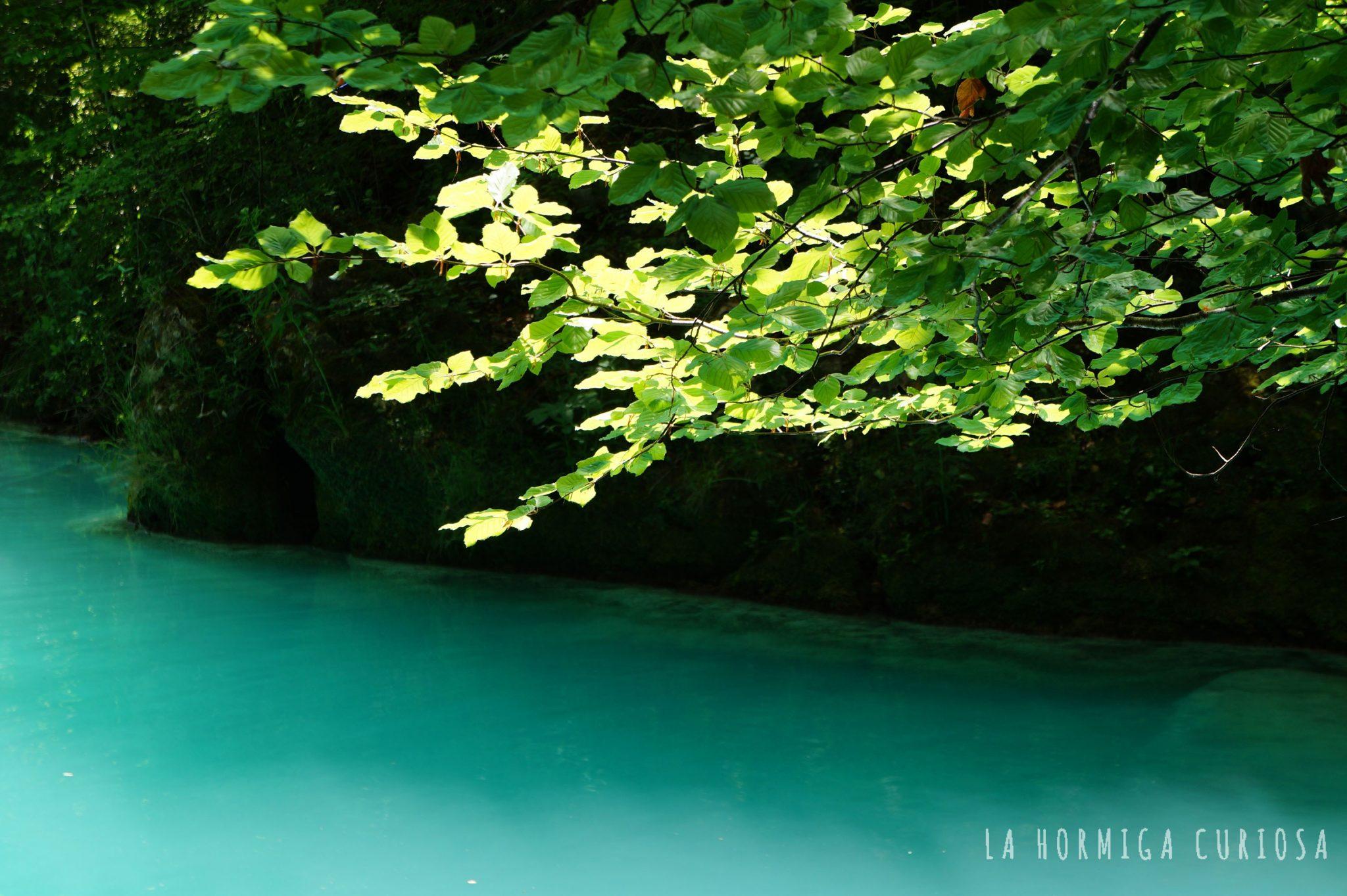 urederra-paraiso-de-aguas-turquesas